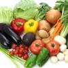 家庭菜園で子どもの食育を!野菜嫌いは本当に克服出来る?