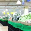 家庭菜園の野菜はスーパーより高い!?コストだって大事です!