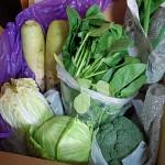 実家の新鮮野菜便が到着!それでも私が野菜を作るワケ